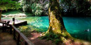 Gorgazzo springs